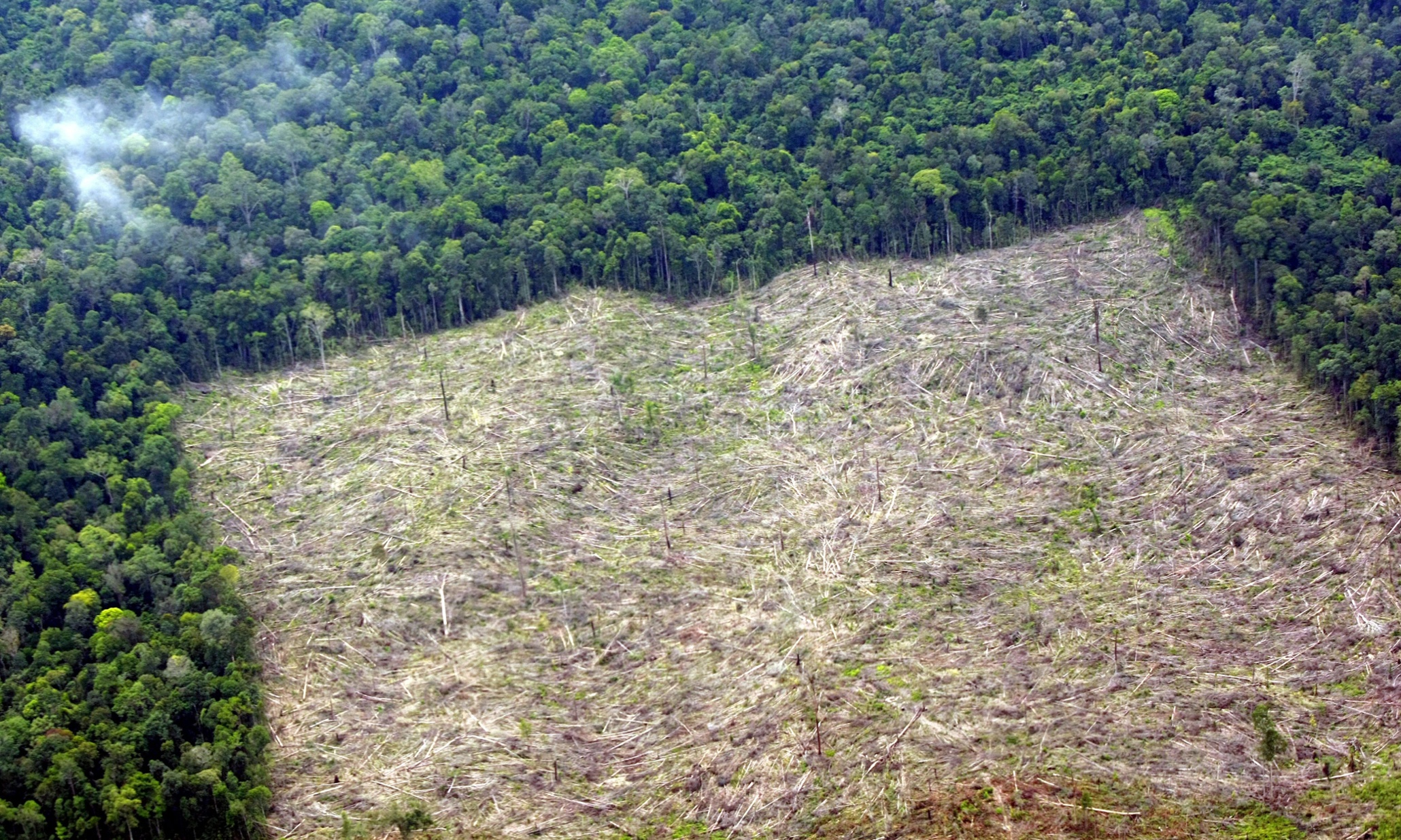 epa03694766 An aerial picture made available on 10 May 2013 shows deforestated land in Indragiri Hulu, Riau province, Indonesia, 04 May 2013. According to Greenpeace, Indonesia is implementing a forest moratorium, but in fact the deforestation is still happening, with customary forests, community forests, protected forests and national parks also being slated. This not only impacts the emission of Green House Gases, and natural disasters, but also social conflict and poverty as the community lost their access to the forest resources and livelihood. Indonesia is likely to extend a two-year moratorium on forest clearing due to expire this month, the Forestry Ministry said. In May 2011, President Susilo Bambang Yudhoyono signed a decree committing Indonesia to a moratorium on clearing permits for an area of about 60 million hectares of natural forest and carbon-rich peatland. The country's deforestation rate has decreased significantly, from 3.5 million hectares a year during 2002-09 to currently 450,000 hectares a year. Indonesia is among the largest producers of greenhouse gases, largely owing to the rapid destruction of its forests. It aims to reduce the emissions by at least 26 percent by 2020. EPA/BAGUS INDAHONO EPA/BAGUS INDAHONO picture by The Guardiam.com