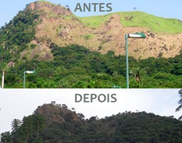 AntesEDepoisReflorestamentoMorroDoPicaPau2