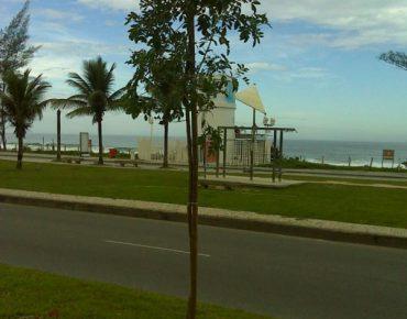 Arborização 02 - Avenida Lúcio Costa recebe novas árvores