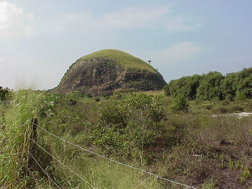 Antes da intervenção, área coberta de vegetação exótica e invasora. Destaque também para o topo da pedra, com vegetação invasora.